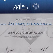 MIS Global Conference 2011